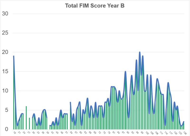 FIM Year B